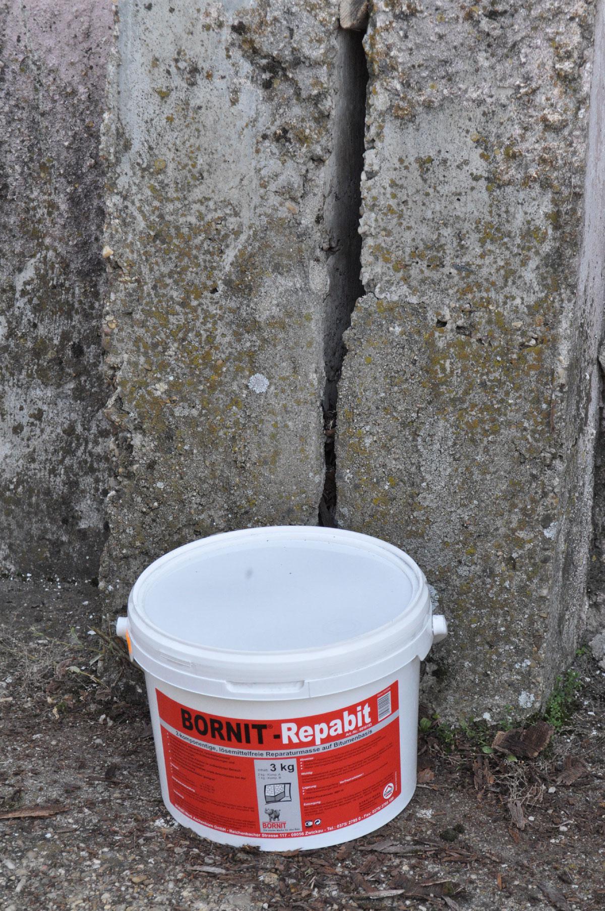 BORNIT-Repabit